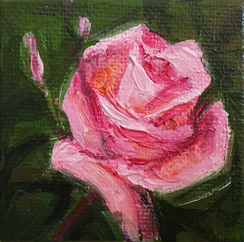 Rose Pink miniature oil painting by Kim Victoria