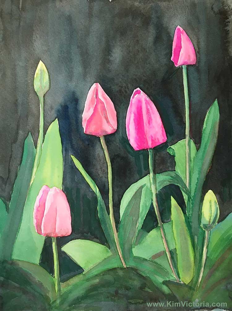 Pink Tulips watercolor  by Kim Victoria